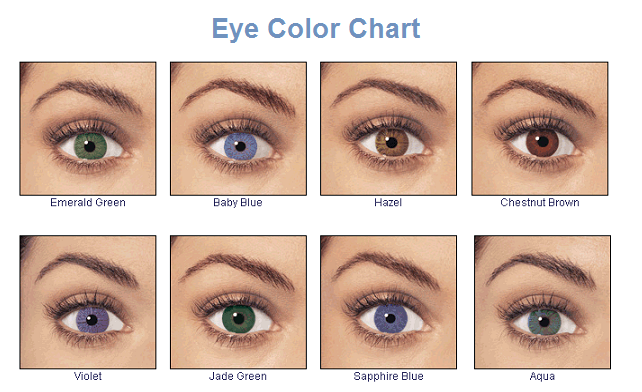 The Best Eye Shadows For Your Eye Color Ihoot