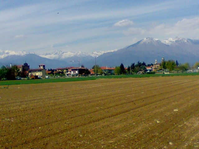 フェレット (イタリア)