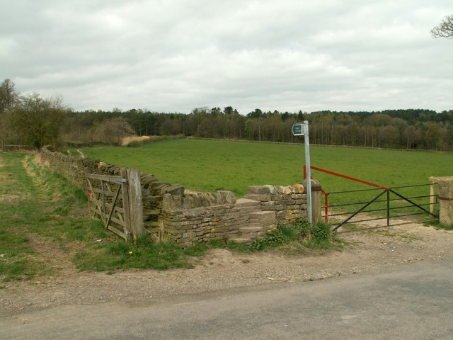 Fields and Deffer Wood - geograph.org.uk - 397478
