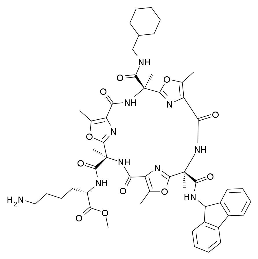 neuropeptides synthesise