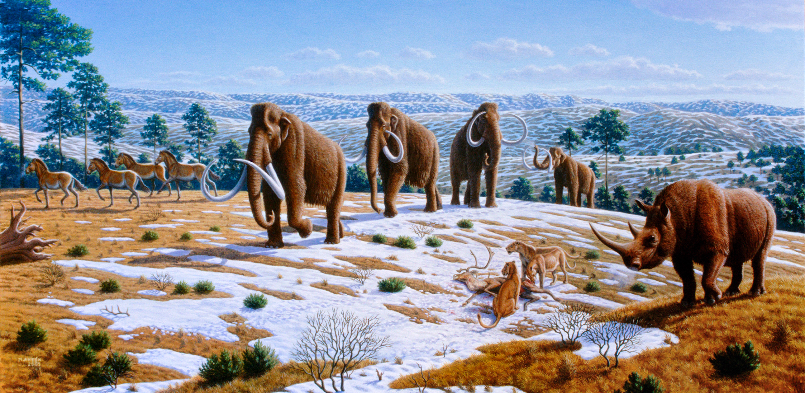 Image Result For Ice Age Mammals
