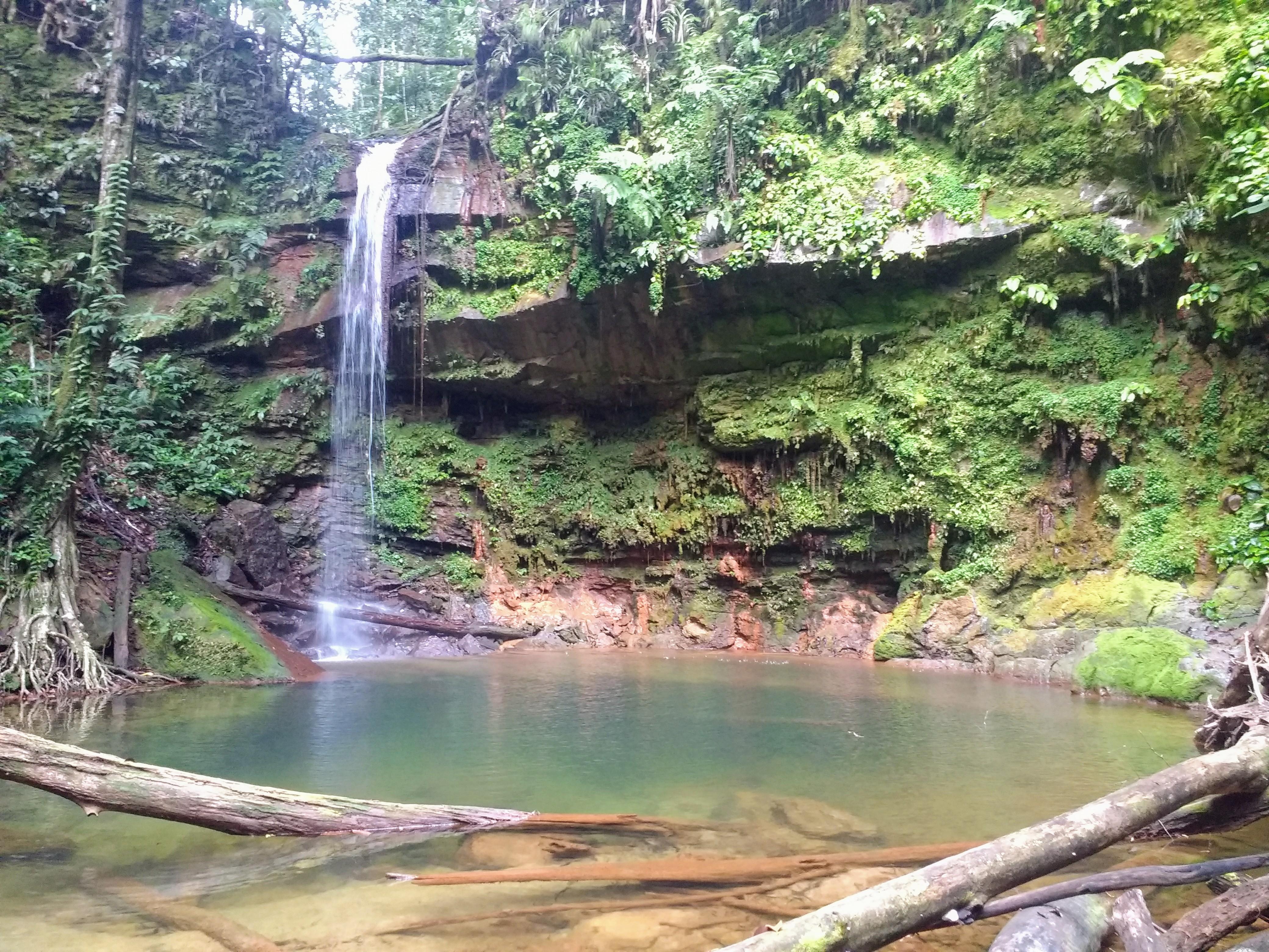 File:Lambir Hills National Park - Pantu Waterfall.jpg - Wikimedia Commons