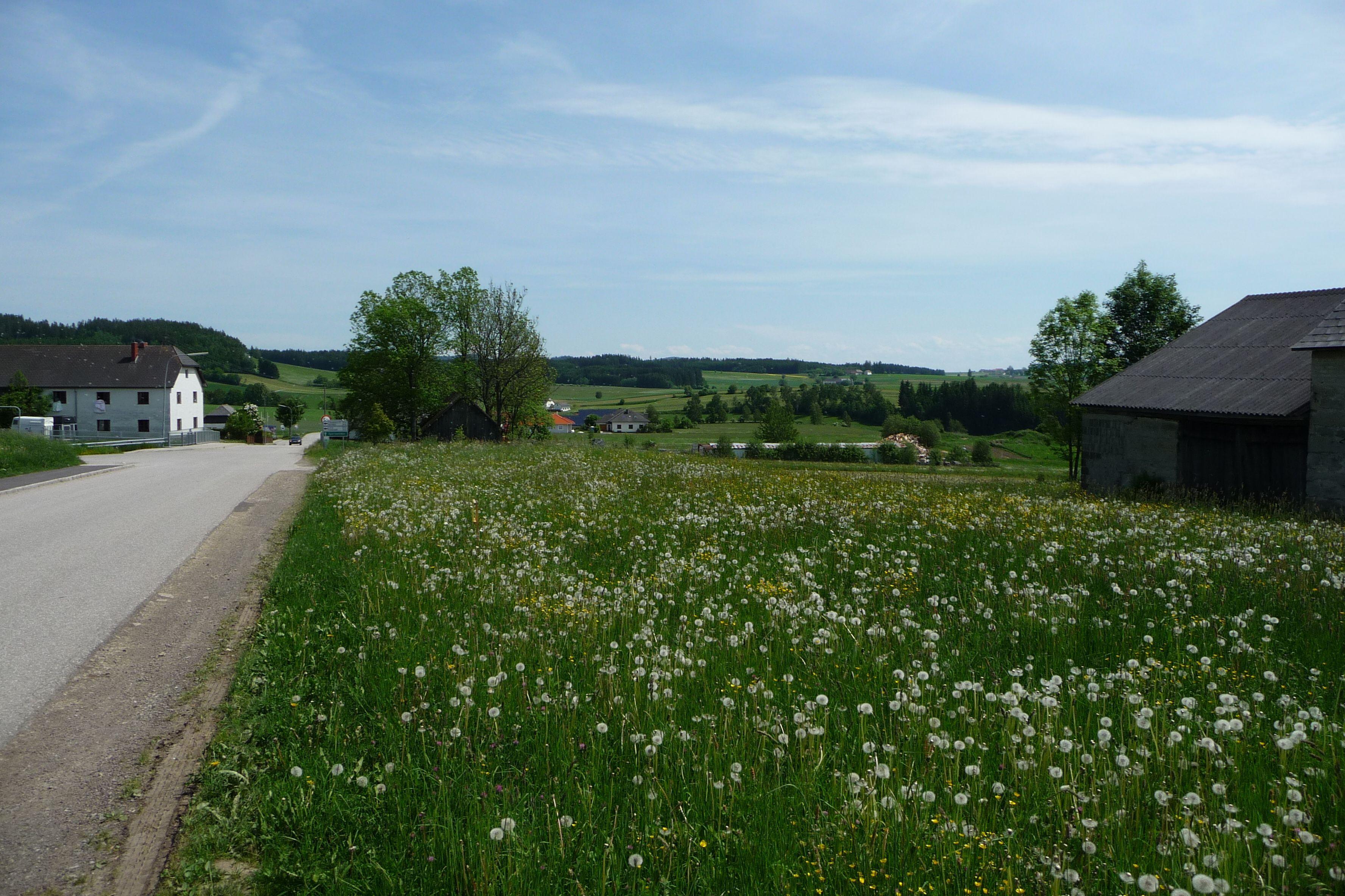 Save the Date: Infoabend ber die Klimakrise in Bad Leonfelden