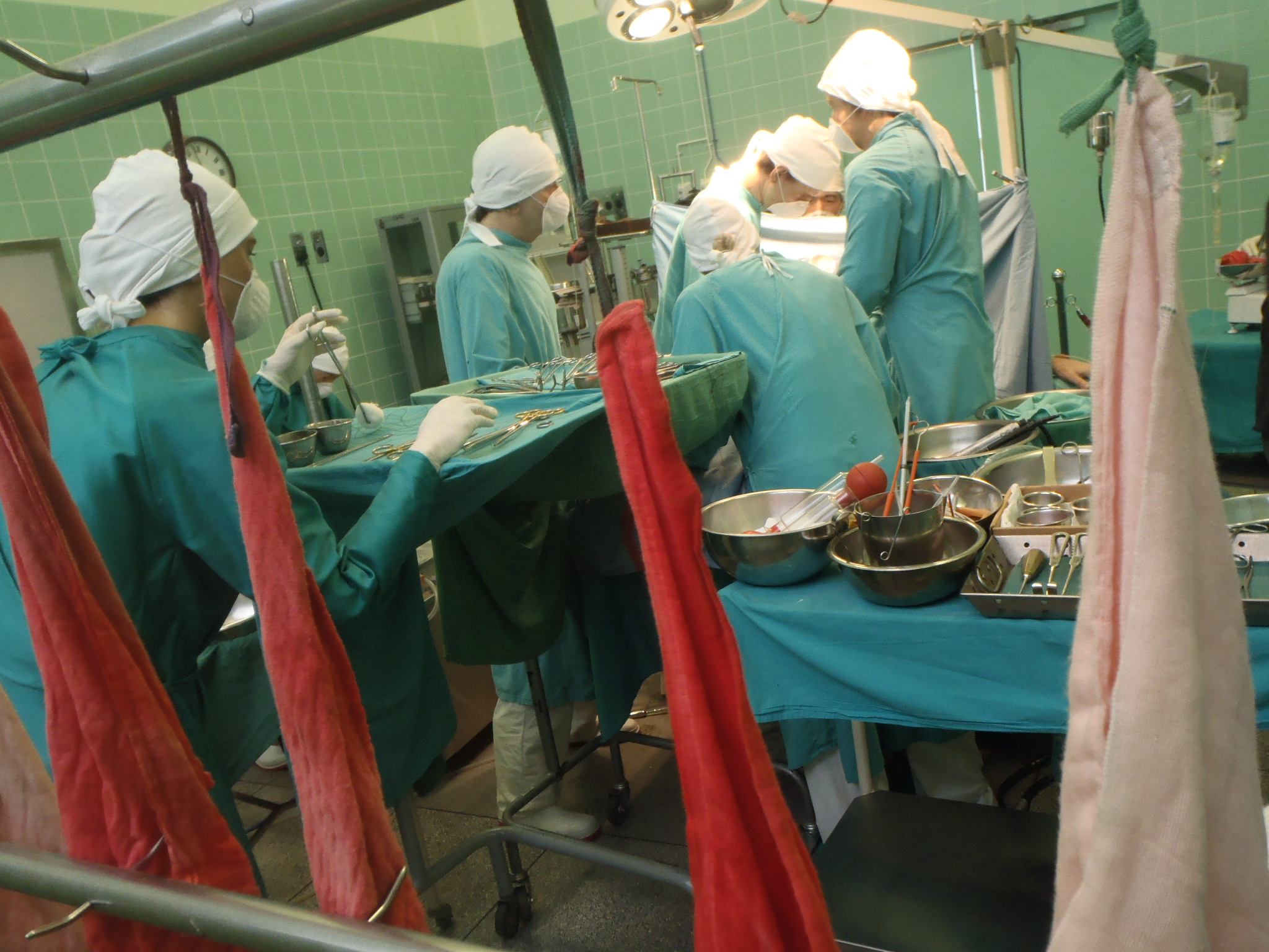 Organ transplantation - Wikipedia