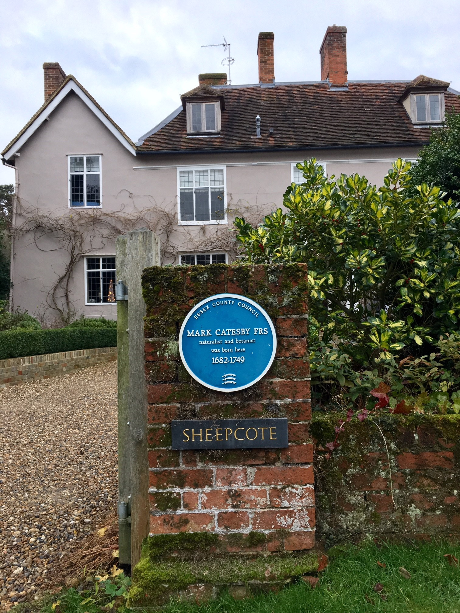 Mark Catesby's birthplace in Castle Hedingham, Essex