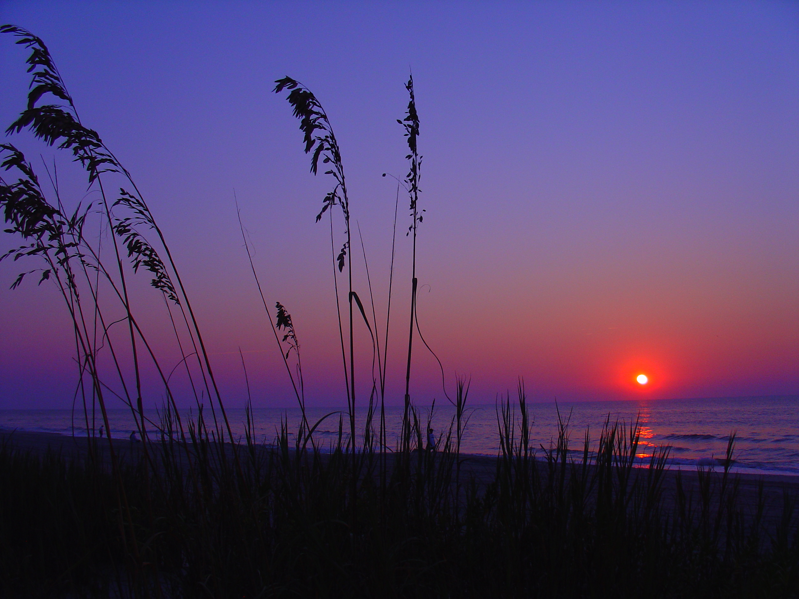 http://upload.wikimedia.org/wikipedia/commons/e/e6/Myrtle_Beach_Sunrise1.jpg