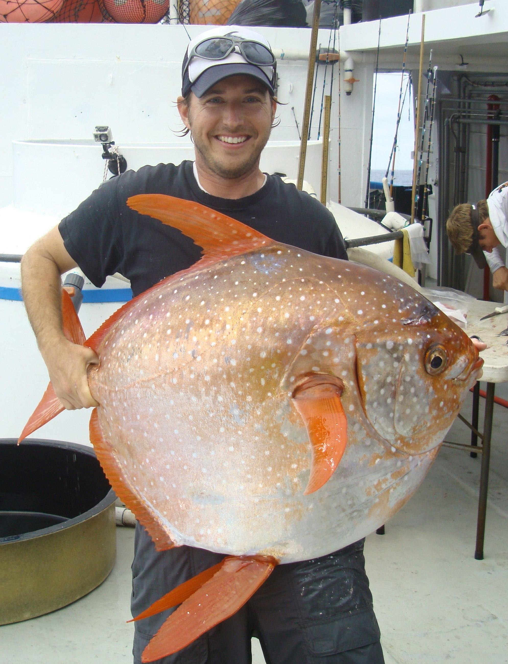 15 May: The Opah is confirmed as the first known warm-blooded fish. Opah 6.jpg