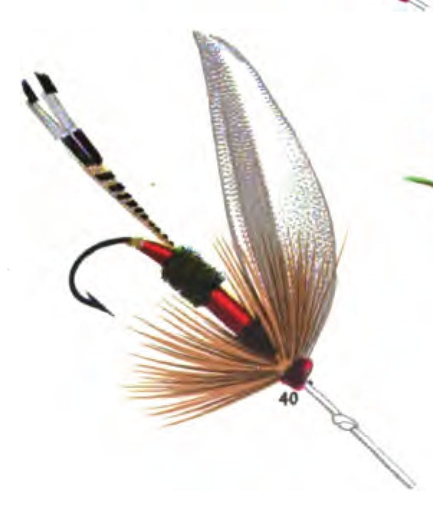 Royal coachman wikipedia for Fly fishing flys