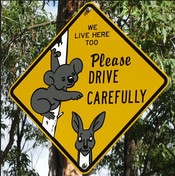 Road sign depicting a koala and a kangaroo