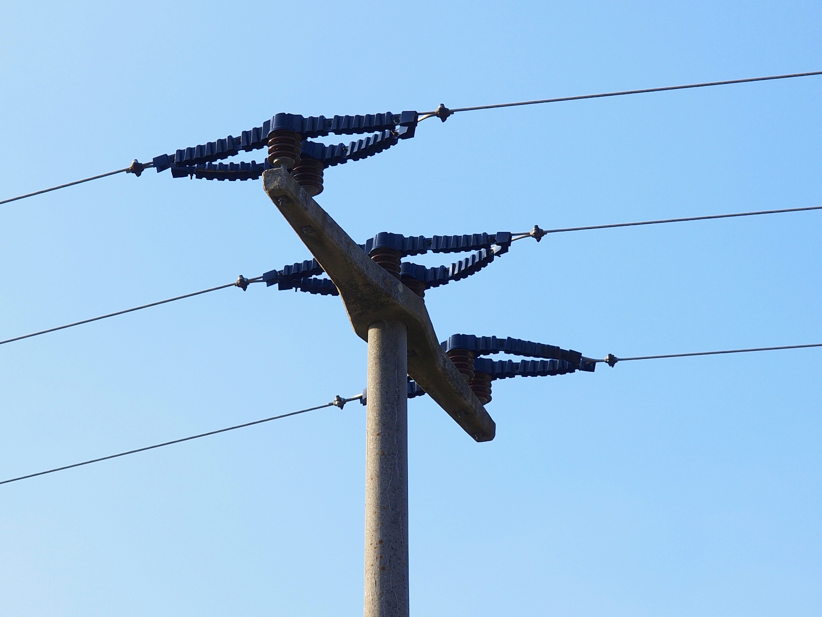 File power line insulated conductors g wikimedia commons