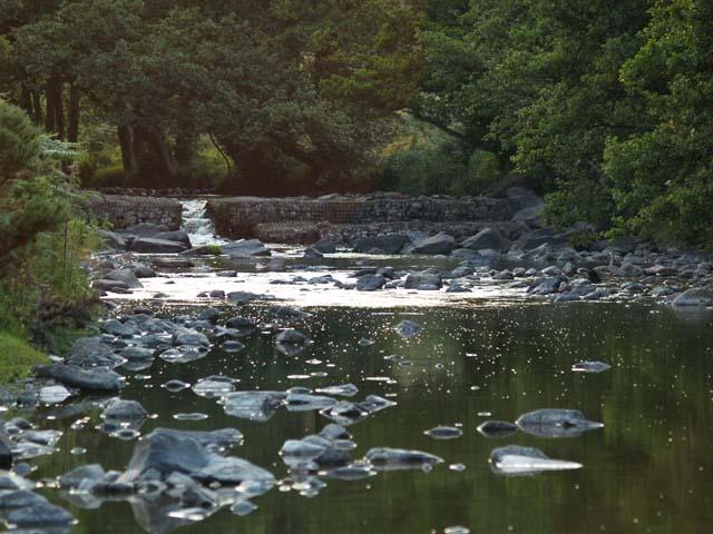 River Breamish near Ingram. - geograph.org.uk - 220392