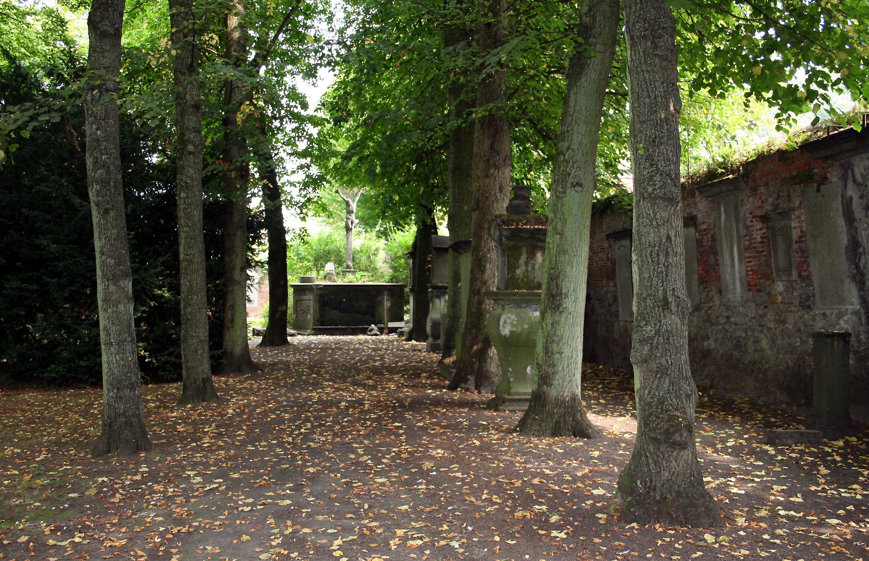 File soignies belgique le parc le calvaire et les for Le comptoir du meuble bruxelles