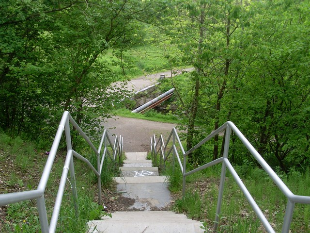 Steps into Darnley Mill Country Park - geograph.org.uk - 1319162
