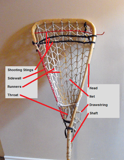 Lacrosse Stick Wiki Everipedia