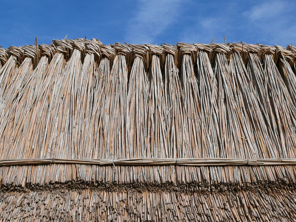 File thatched roofs z04 jpg - How to make a thatched roof ...