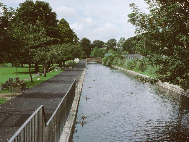 The Tavistock Canal - geograph.org.uk - 6092