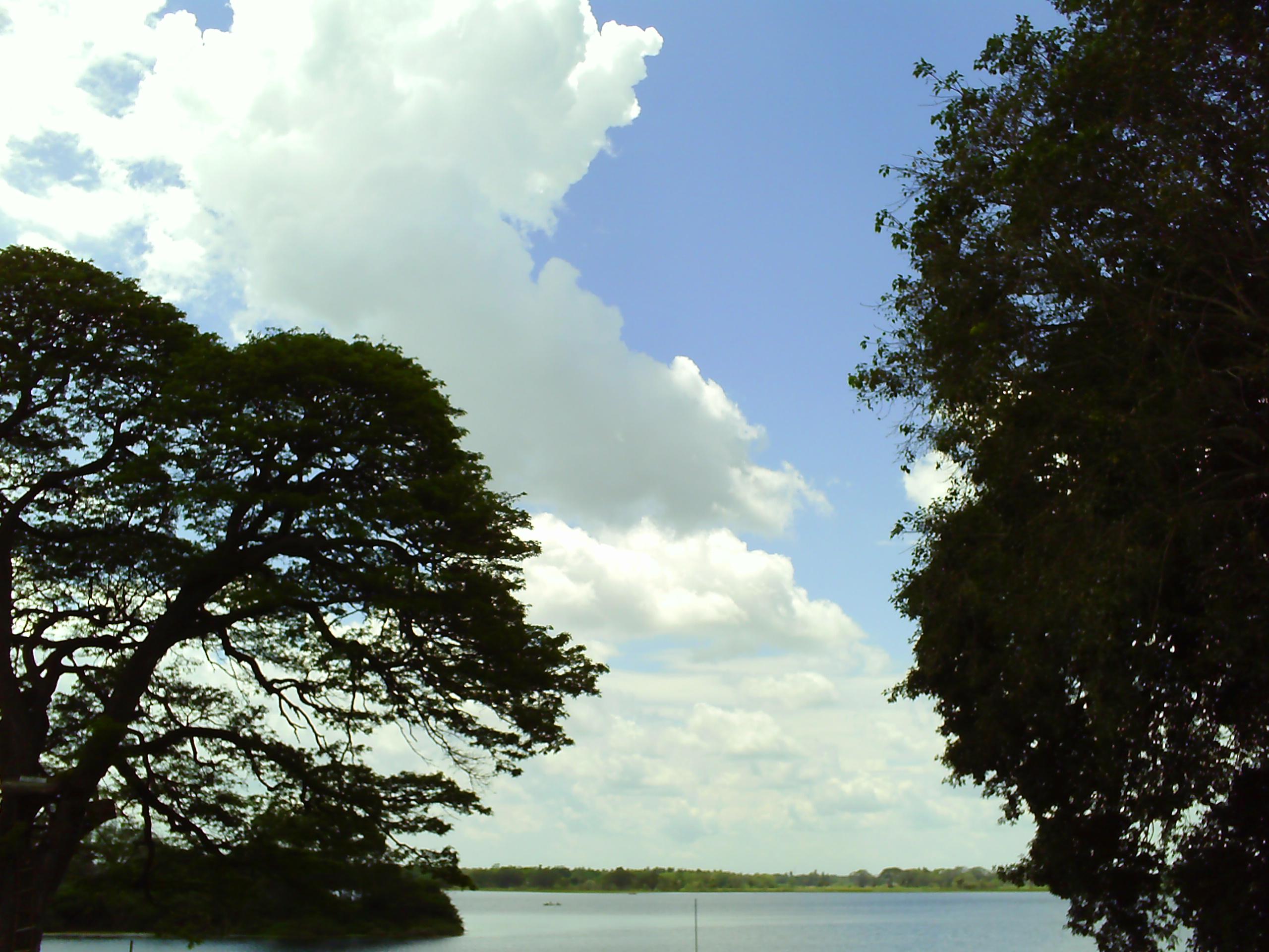 Nidikumba, Hotels, River National Park