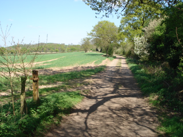 Track to New End Farm - geograph.org.uk - 466749