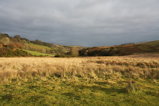 Valley of the River Barle - geograph.org.uk - 648803