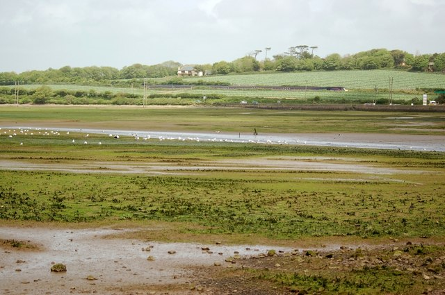 A view across Lelant Saltings - geograph.org.uk - 394468