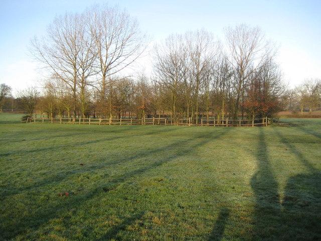 Aldenham Country Park - geograph.org.uk - 681930