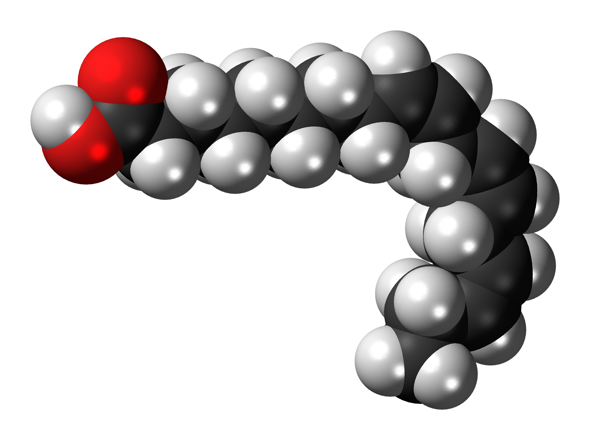 File:Alpha-Linolenic-acid-3D-spacefill.png - Wikimedia Commons