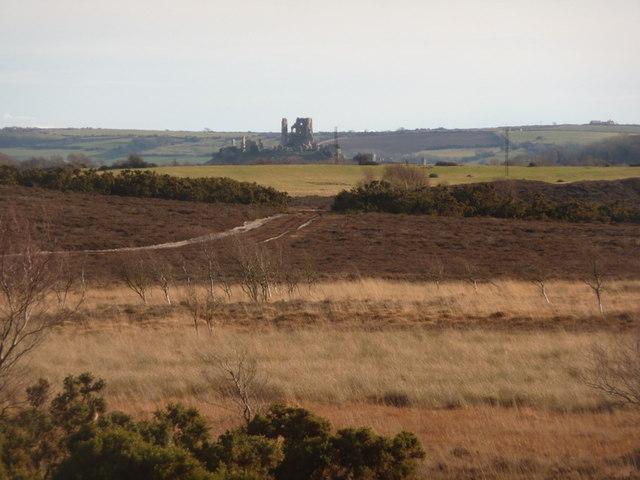 Arne, view across Hartland Moor towards Corfe Castle - geograph.org.uk - 1718909