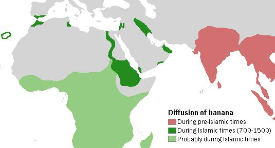 "Map stating that banana cultivation occurred in pre-Islamic times in India and Southeast Asia, during the 700–1500 CE ""Islamic period"" along the Nile River and in Mesopotamia and Palestine, and less-certainly in sub-Saharan Africa during that same period"