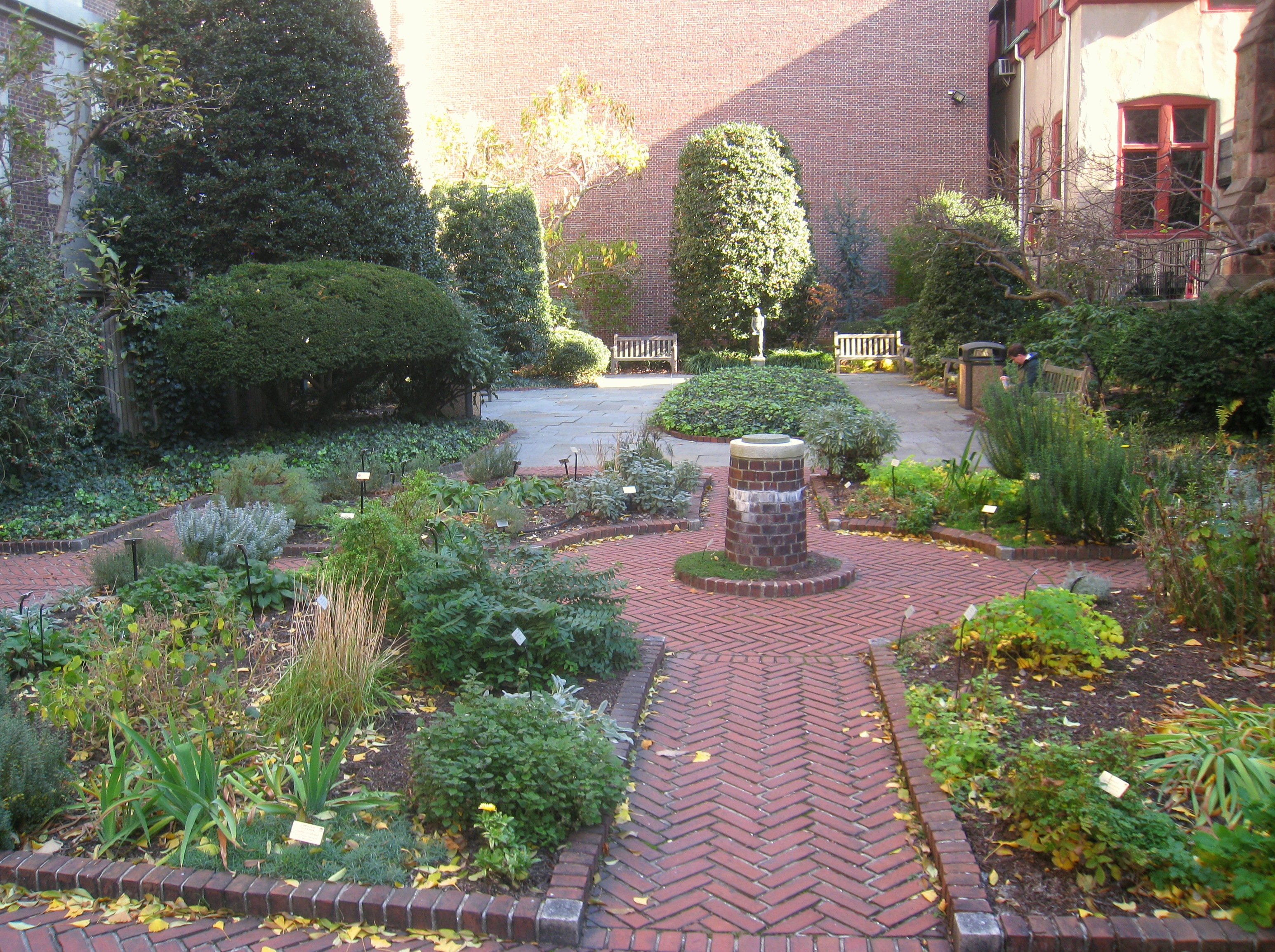 File Benjamin Rush Medicinal Plant Garden   IMG 7239 JPG. File Benjamin Rush Medicinal Plant Garden   IMG 7239 JPG