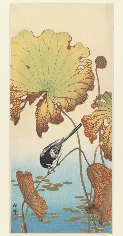 File:Brooklyn Museum - Wagtail and Lotus - Ohara Koson (Shoson).jpg