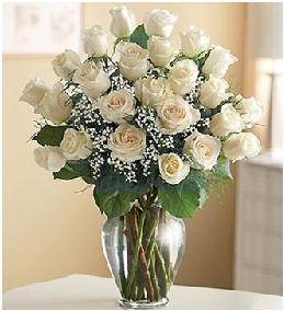 Qué significa regalar rosas blancas