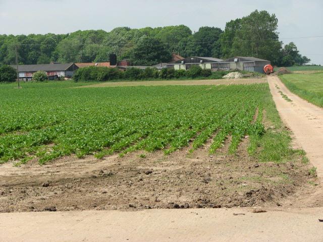 File:Heath Farm, viewed from Banningham Road - geograph.org.uk - 455431.jpg