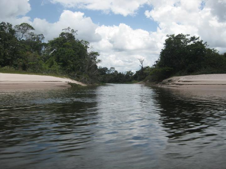 File:Laguna que dirige hacia el salto El Aponwao.jpg