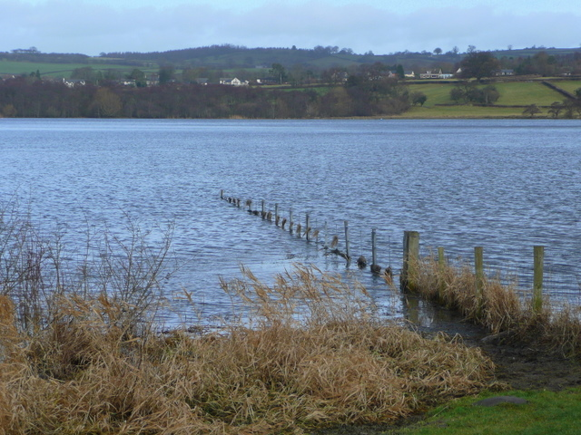 Llangorse Lake - geograph.org.uk - 1128088