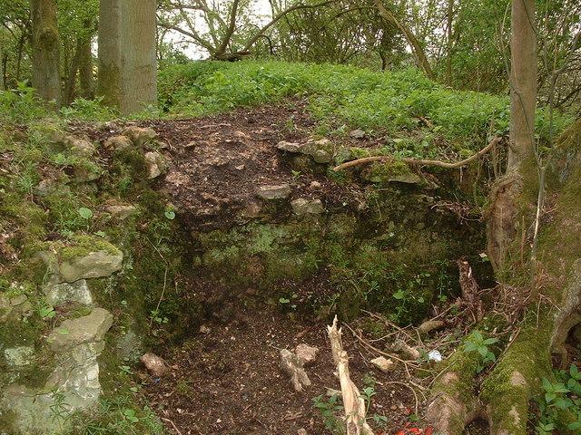 FileMedieval Hunting Lodge Remains Near Ashton