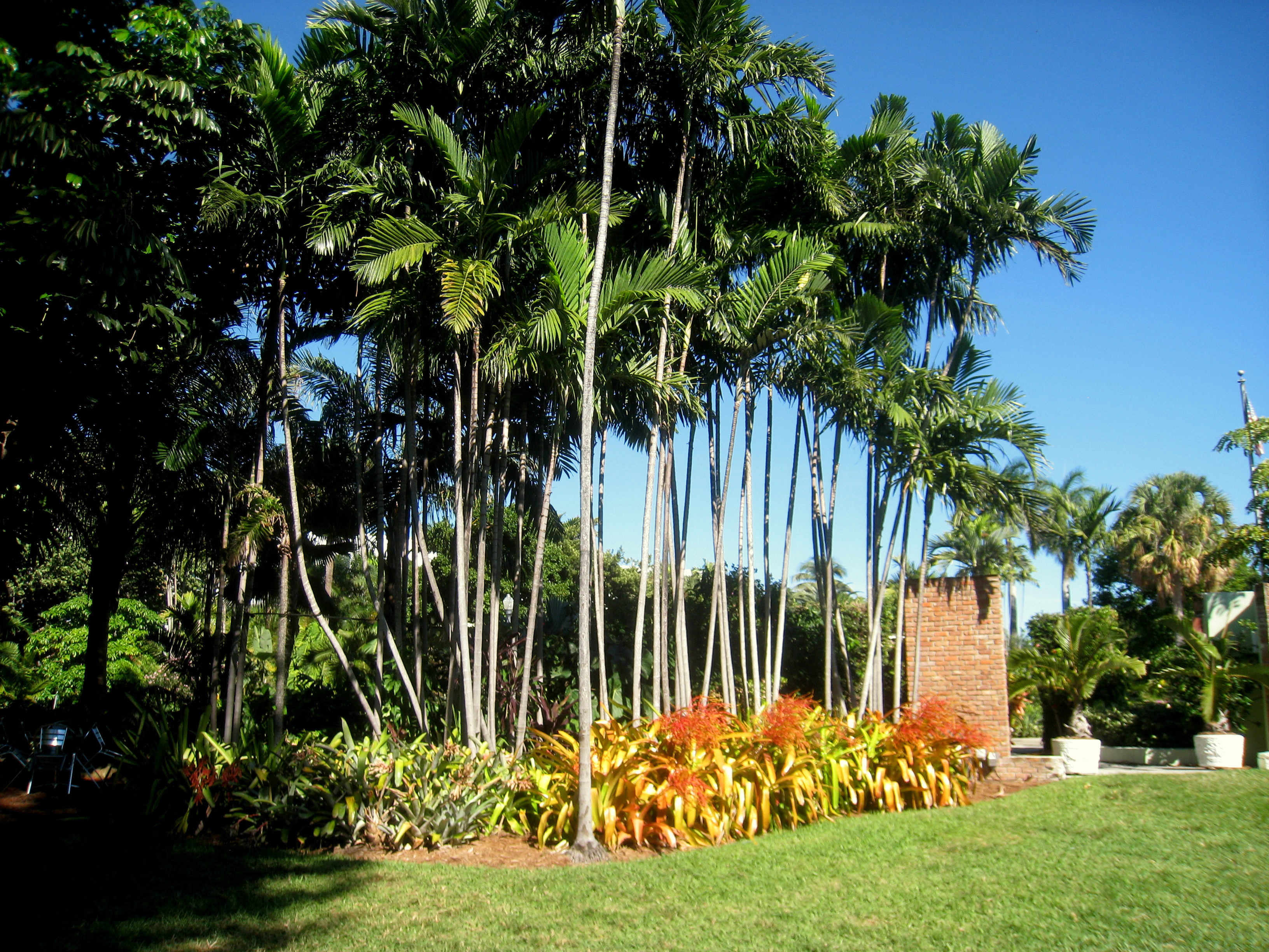 Merveilleux File:Miami Beach Botanical Garden   IMG 8020.JPG