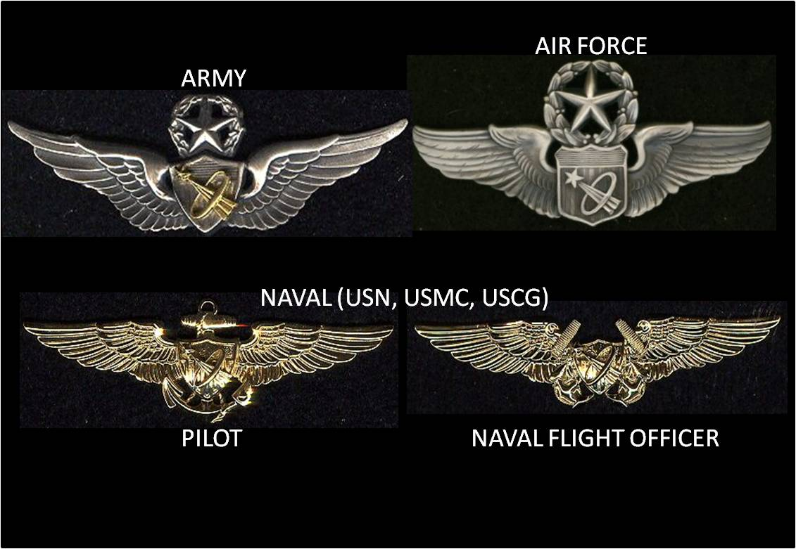 astronaut wings insignia -#main