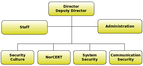 NSM organizational structure.png