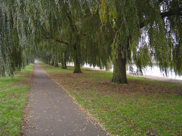 Nene Way, Peterborough - geograph.org.uk - 83170