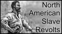a biography of nat turner an american leader of the rebellion of the blacks This paper discusses the book the fires of jubilee: nat turner's fierce rebellion, by stephen b oates, a tale of what it was to be a slave in the south in the 1800s, and how it drove some blacks to violence and hatred.