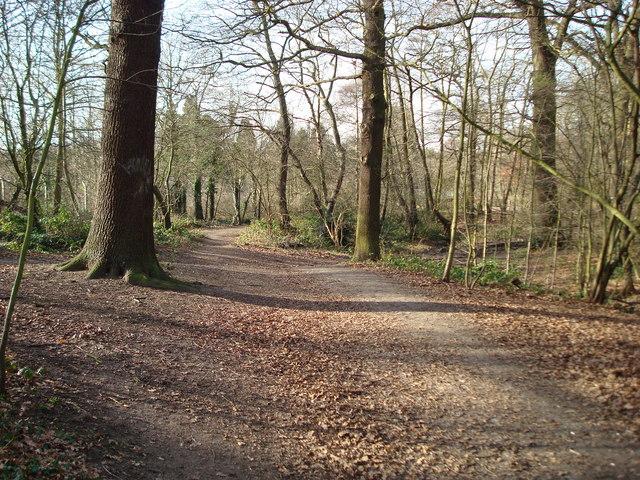 Petts Wood - geograph.org.uk - 669775
