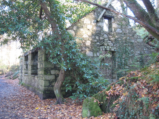 Ruined building in Roches Wood, Kennall Vale - geograph.org.uk - 1051351