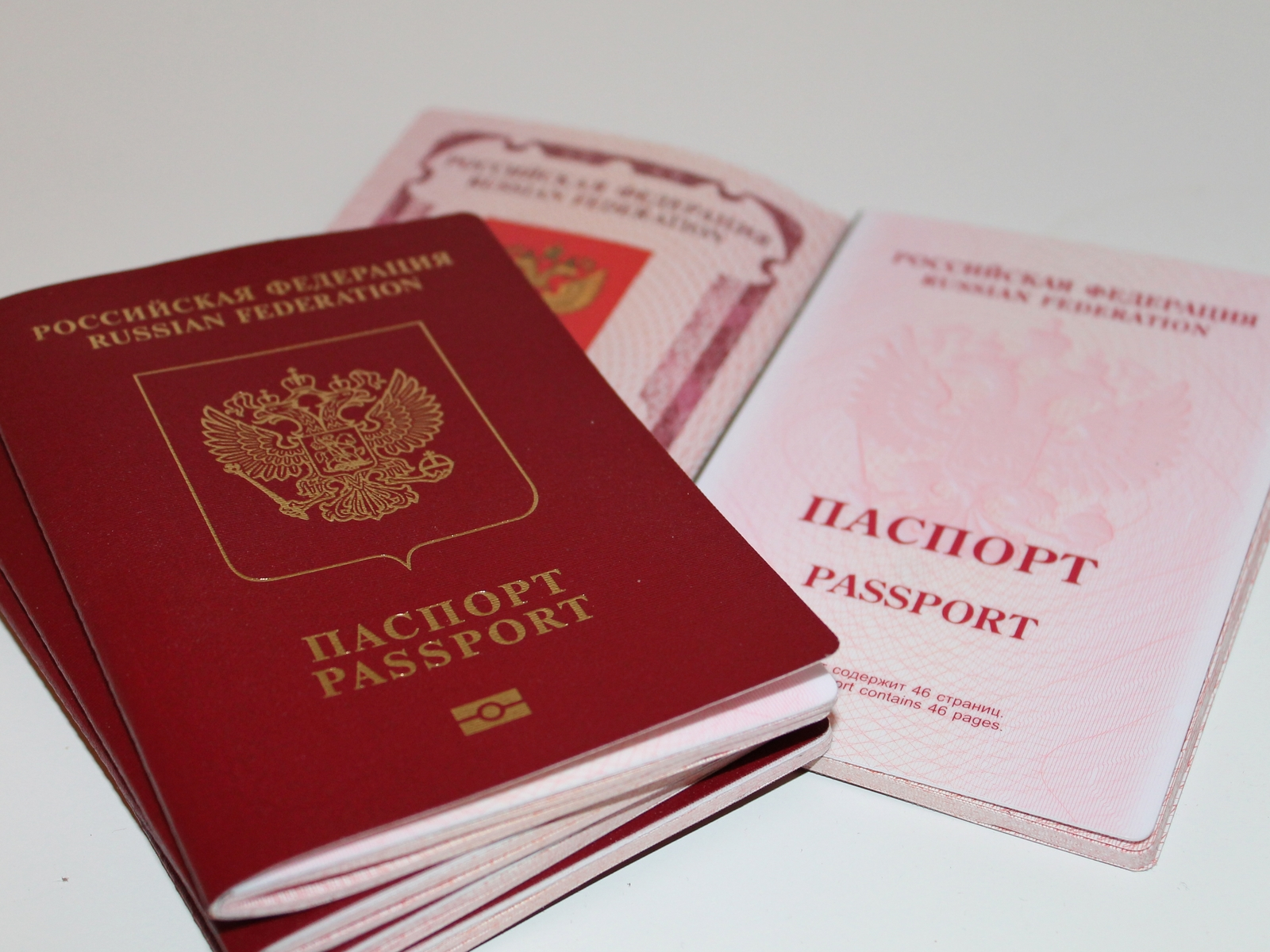 Image result for russian passports