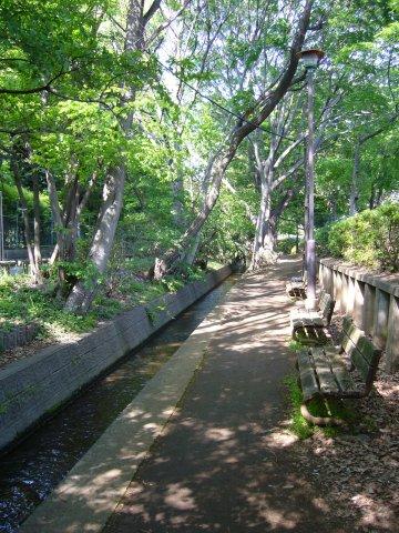 File:Senkawa josui1.jpg