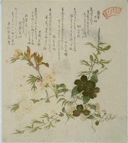 Datei:Shunman-flowers-and-poems.jpg