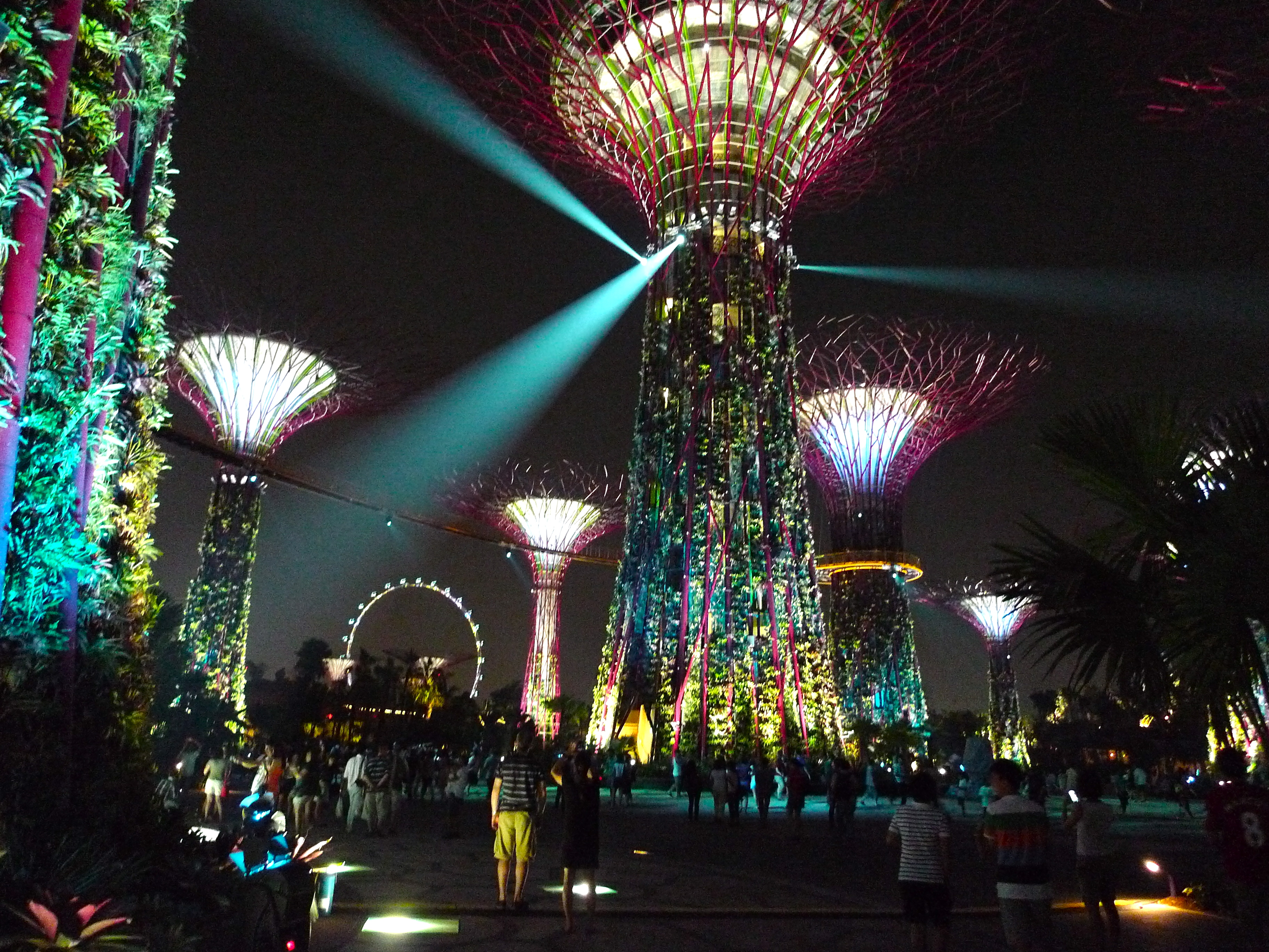 File supertree grove gardens by the bay singapore 20120630 wikimedia commons - Garden by the bay flower show ...