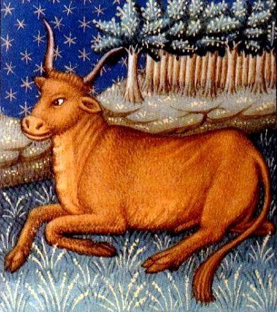 Taurus2.jpg