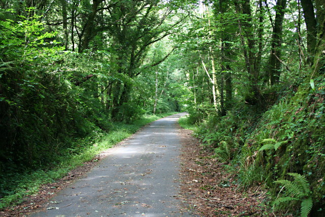 The Plym Valley Cycleway - geograph.org.uk - 883230