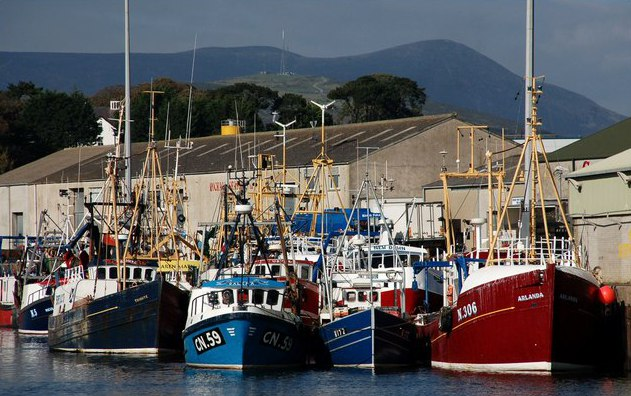 File:The weekend at Kilkeel harbour - geograph.org.uk - 583367.jpg