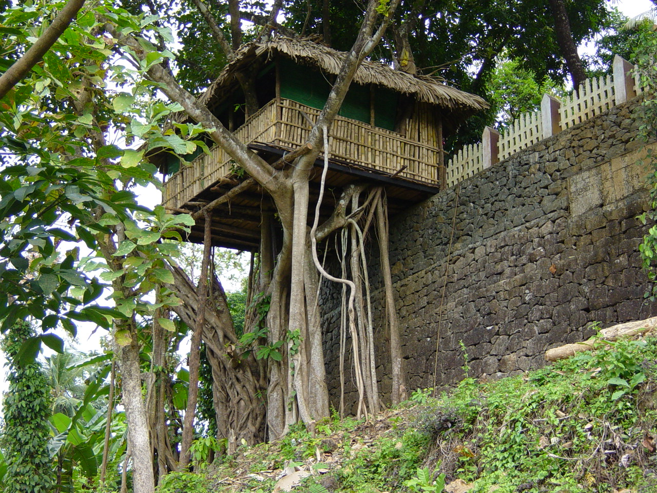 Attractive Treetop House #5: File:Tree Top House.jpg